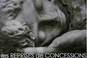 Les REPRISES DE CONCESSIONS : quelles concessions, pourquoi, quand et comment